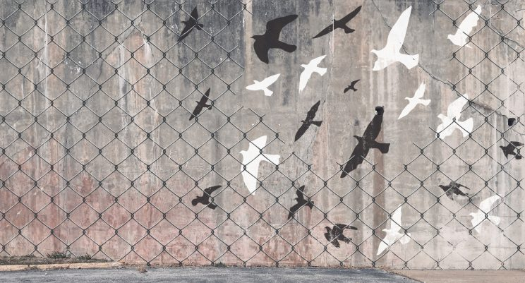 Public art painting on a grungy concrete wall of birds flying free through a hole in a fence